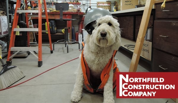 Otto the Construction Dog Shares His Tips on Style